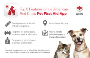 Red Cross App Photo