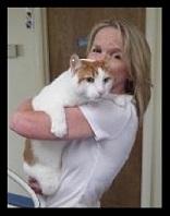 client cat hug